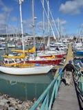 纳尔逊小船小游艇船坞,新西兰 库存照片