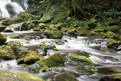 纳尔逊瀑布在塔斯马尼亚岛 免版税图库摄影