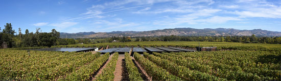纳帕谷全景从一个葡萄园的使用供给的太阳电池板酿酒厂动力 免版税库存照片