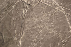纳斯卡线在秘鲁沙漠 库存图片