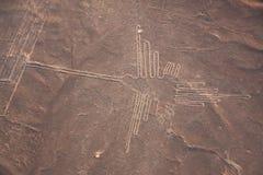 纳斯卡线,蜂鸟,秘鲁鸟瞰图  免版税库存照片
