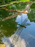 纳稀威, TN美国- Cheekwood公园巨型木蜻蜓雕刻 免版税库存照片