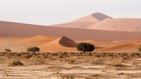 纳米布沙丘的看法 库存图片
