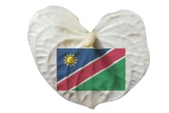 纳米比亚支持者概念 免版税库存照片