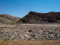 纳米比亚沙漠独特的地理概略的岩石山天旱风景地面与分裂的石头和沙漠绿色植物的 图库摄影