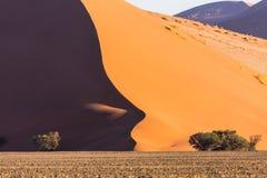 纳米比亚沙漠,在日落的Sossusvlei 免版税库存图片
