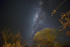 纳米比亚的夜空的魔术 库存照片