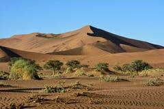 纳米比亚的惊人的沙漠风景 库存照片
