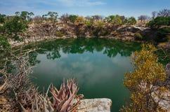 纳米比亚` s Otjikoto湖 库存图片