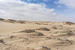 纳米贝省沙漠,非洲的沙丘 安格斯 库存图片