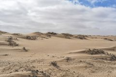 纳米贝省沙漠,非洲的沙丘 安格斯 库存照片