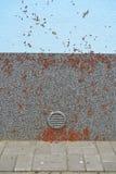 纵火犯,直言的铁匠Pyrrhocoris apterus,臭虫入侵若虫在大厦墙壁上的 图库摄影