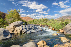 纵长地石头和植物急流在河 免版税库存照片