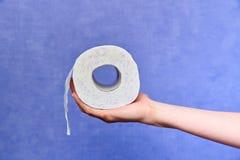 纸卷洗手间 图库摄影