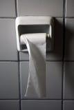 纸卷洗手间 库存照片