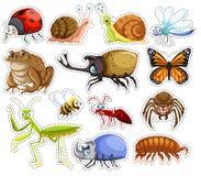 贴纸套许多昆虫 库存例证