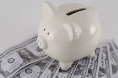 纸币在存钱罐中 免版税库存图片