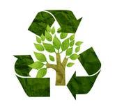 纸张被回收的结构树 库存图片