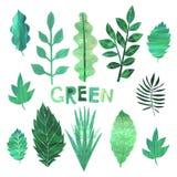 纸拼贴画绿色叶子收藏 向量例证