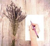纸捆绑干淡紫色花和粪与拷贝温泉的 库存照片