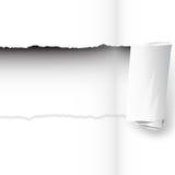 纸撕毁 免版税库存图片