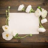 纸明信片和白花在树木繁茂的背景 平的位置,顶视图 背景几何老装饰品纸张葡萄酒 免版税库存图片