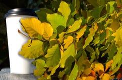 纸杯用咖啡在秋天公园的木桌旅馆站立有黄色叶子背景 免版税库存图片