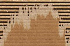 纸板波纹状的难看的东西纹理样品 免版税库存照片