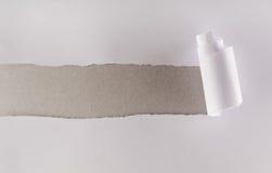 纸板灰色层纸显示的被撕毁的白色 库存图片
