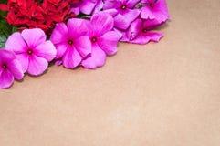 纸板纹理在与红色花和玫瑰的背景中在角落 免版税库存图片