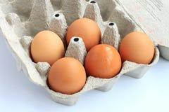 纸板蛋盒 免版税库存图片