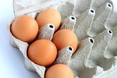 纸板蛋盒 免版税库存照片