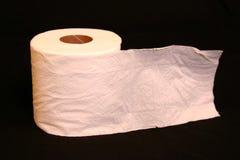 纸洗手间 免版税库存图片