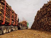 纸浆材料 卡车带来装载的木头在货船在口岸 免版税库存图片