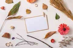纸牌组成与秋天干燥植物 库存图片