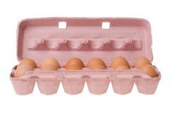 纸盒鸡蛋 免版税库存图片