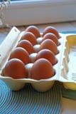 纸盒frech鸡蛋 免版税库存照片