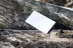 纸空白木头 免版税图库摄影