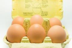 箱6个鸡蛋 库存图片