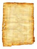 纸莎草 免版税库存图片