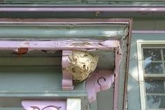 纸质黄蜂巢附有一个老房子的走廊房顶的外部角落 库存照片