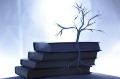 纸结构树 库存照片