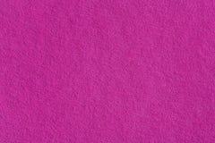纸紫色 喂res照片 免版税库存照片