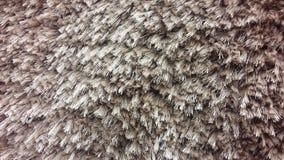 纹理咖啡地毯, 库存图片
