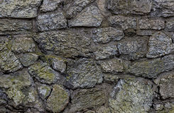 纹理城堡墙壁灰色石头阻拦用绿色青苔纹理盖的老 免版税库存图片