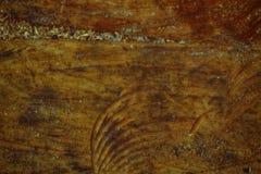 纹理或背景的树桩木结构 免版税图库摄影