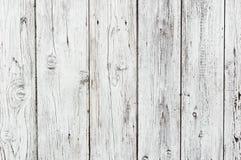纹理白色木头 库存照片