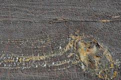 纹理的,背景老棕色破裂的雪片油漆 库存图片