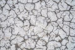 纹理盐土壤 库存照片