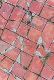 纹理砖 免版税图库摄影
